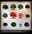 trees vector image