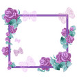 lilac roses with leaves and openwork butterfly vector image