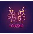 logo premium summer fruit coctail vector image