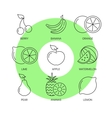 Organic fruit thin line icons set vector image vector image