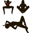 Nude girls vector image
