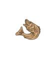 Rockfish Jumping Up Drawing vector image