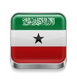 Metal icon of Somaliland vector image