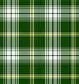 St Patricks Tartan vector image vector image