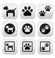 Dog paw prints buttons set vector image vector image