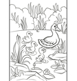 Kind duck and free little cute ducklings swim on t vector image