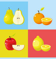 set delicious tropical and exotic fruit vector image