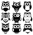 Cute black and white owls set vector image