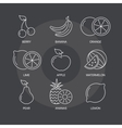 fruit thin line icons set on dark background vector image vector image