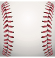 Baseball Closeup vector image