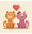 lovely kittens pink and yellow with heart vector image