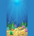 Underwater landscape and the undersea world vector image