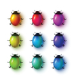 Set of realistic lady bugs vector image vector image