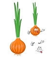 Cartoon green onion vegetable character vector image