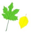 decorative leaf vector image