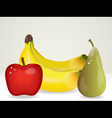 bunch of fruit vector image vector image
