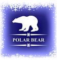 polar bear blur vector image