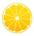 one orange fruite slice vector image