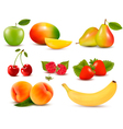Big set of different fresh fruit and berries vector image vector image