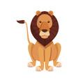 lion sits dangerous predator animal vector image