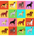 Set of dog with background vector image