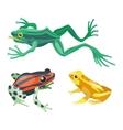 Frog cartoon tropical animals vector image