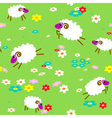 sheep in meadow vector image vector image