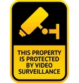 Video surveillance sticker vector image vector image