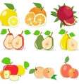 Set of fruits lemon apple orange pomegranate vector image