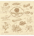 Set of spices and herbs cuisines of Bangladesh on vector image