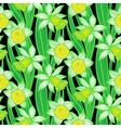Vintage pattern with daffodils or narcissus vector image