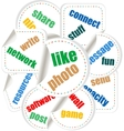 Social Media Word and Icon Cloud vector image