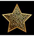gold shiny star vector image