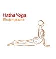 Hatha Yoga Bhujangasana vector image