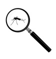 Mosquito and magnifier vector image