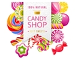 candy shop label with type design and candies vector image