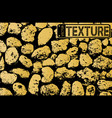 Texture of golden stone coquina wall in cement vector image