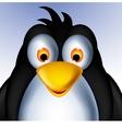 little penguin cartoon vector image vector image