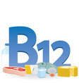foods rich in vitamin b12 vector image