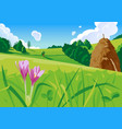 summer landscape with a haystack vector image