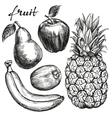 frui set pear apple banana kiwi pineapple hand vector image