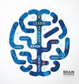 infographics brain colour design diagram vector image vector image