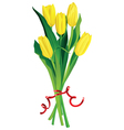 yellow tulips bouquette over white background vector image vector image