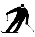 Mountain skier speeding down slope sport vector image vector image