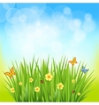 green grass on a blurred background of nature vector image