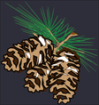 Three fir cones vector image