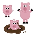 Set of pigs vector image vector image