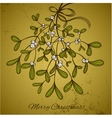 Christmas card with branch of mistletoe vector image