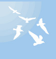 white gulls silhouettes concept vector image