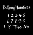 bakung numbers alphabet typography vector image